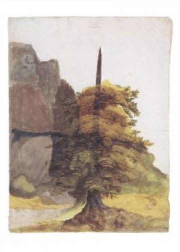 http://www.unahamiltonhelle.co.uk/files/gimgs/th-23_Duerer_Baum_Tree_Steinbruch_Quarry_AD149606_g_v2.jpg